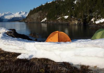 AlaskaCMayRX348
