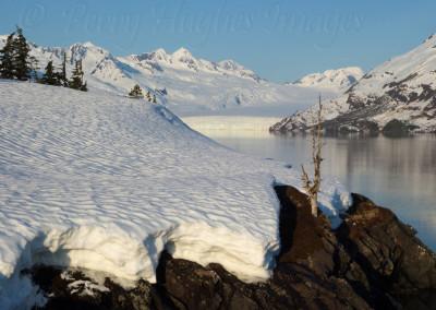 AlaskaCMayRX356