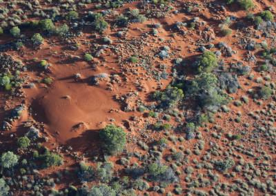 UluruC19-9-10D200-50