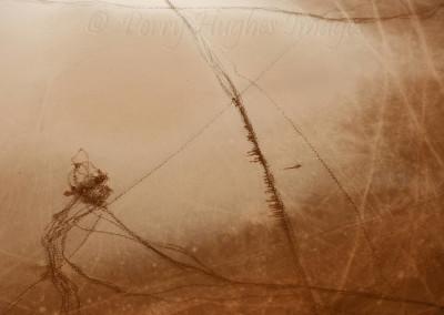 UluruD700C20-9-10190
