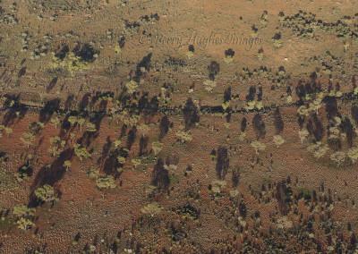 UluruD700R20-9-10124